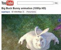Flash på Youtube