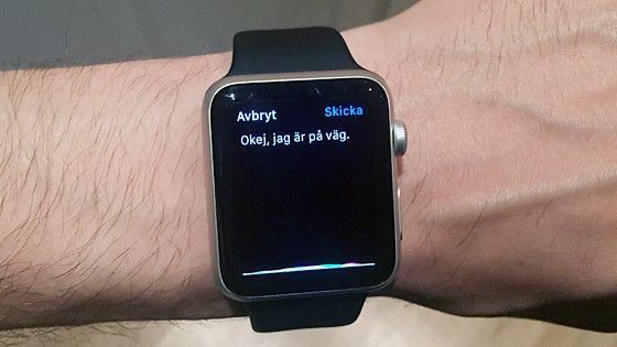 Apple Watch diktering