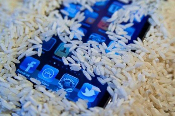 Skål med ris