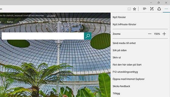 Genom att välja Inprivate-fliken kan du skilja mellan två olika mejlkonton.