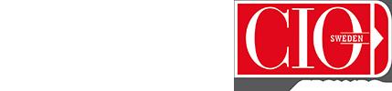 IBM + CIO Logo