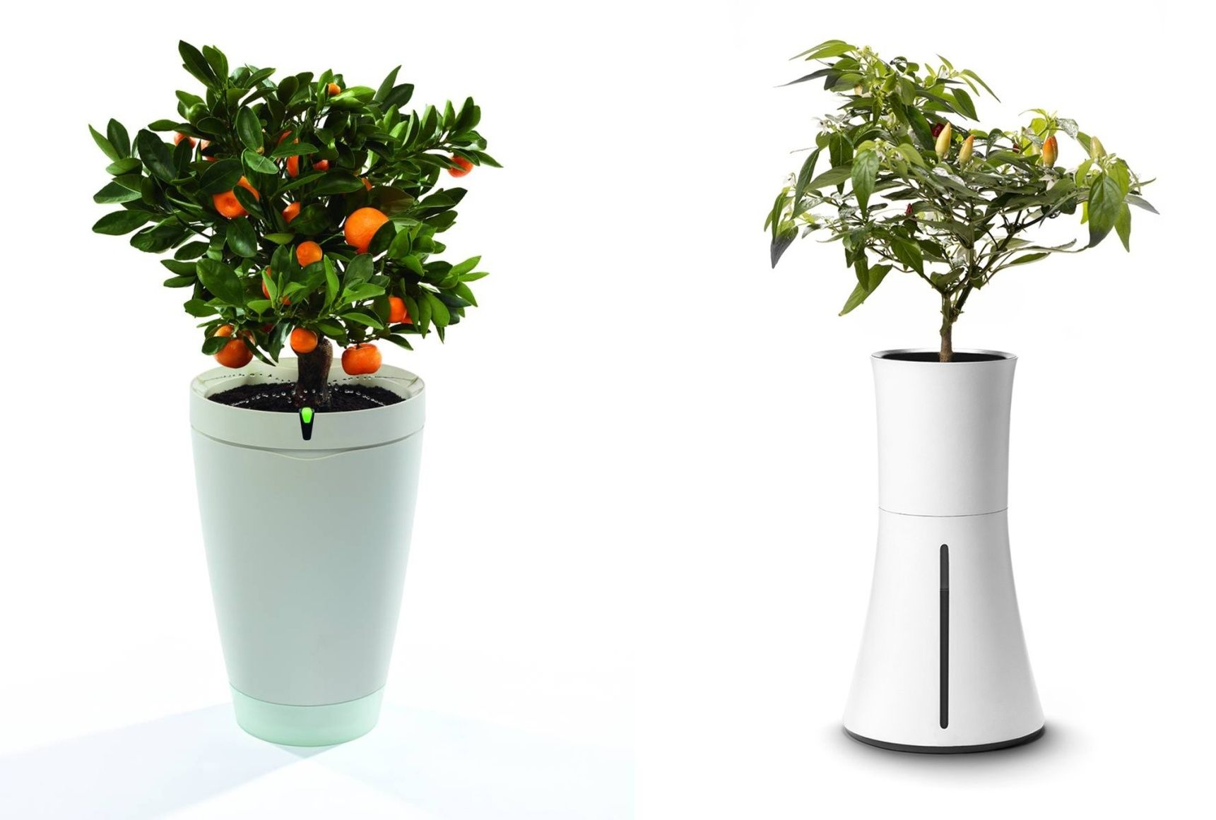 7 smarta teknikprylar för växter och trädgård Smartworld