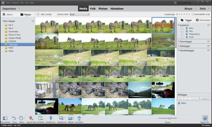 Photoshop Elements organiserare
