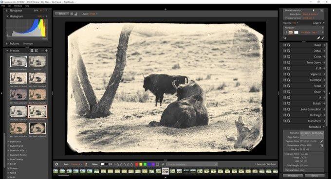 Härma gamla fotografiska filmer