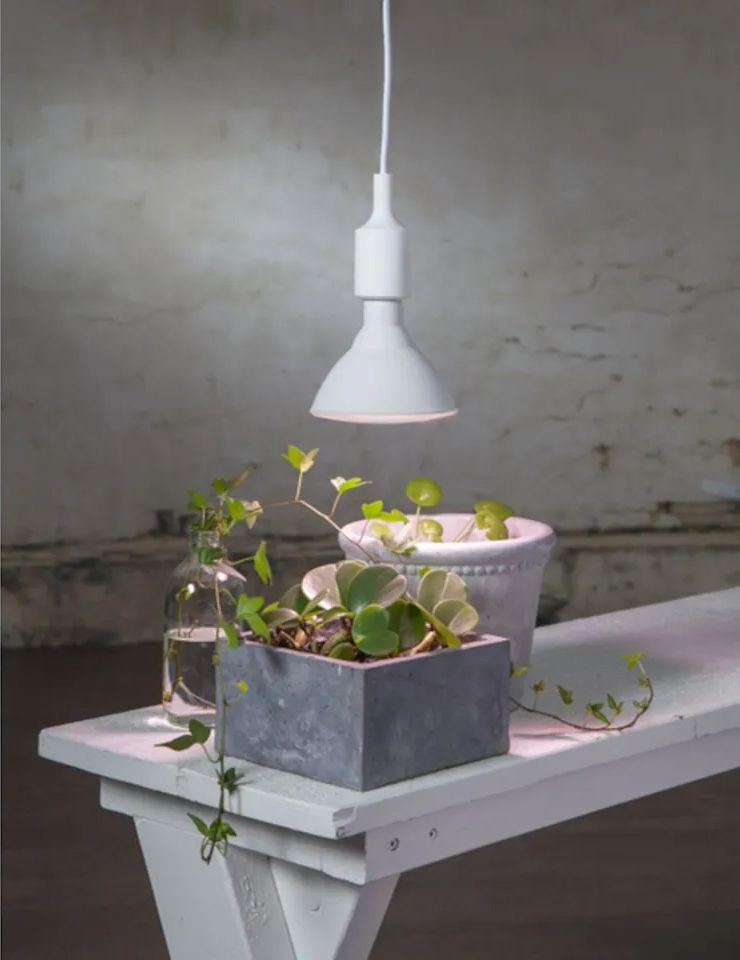 LED lamp for your indoor plants