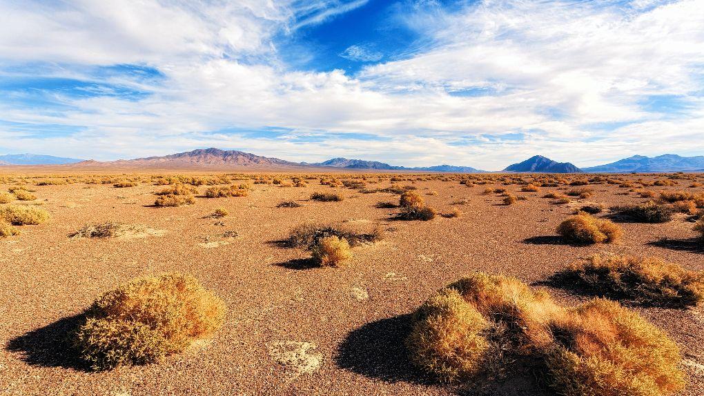 USA:s största solkraftverk byggs i Nevada