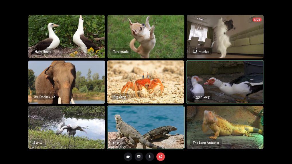 Discord får nya funktioner för videoservrar