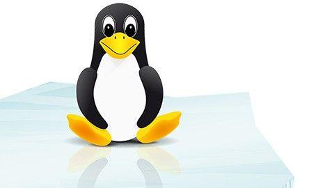 Hur kör jag Windows i Linux?