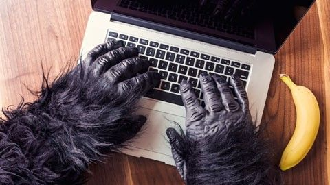 Lösenordsslarv