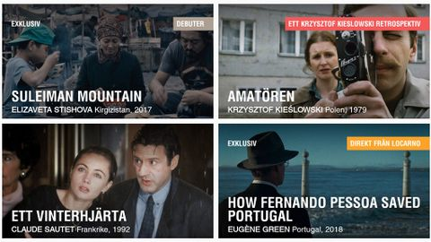 Ett Netflix för smalare filmer