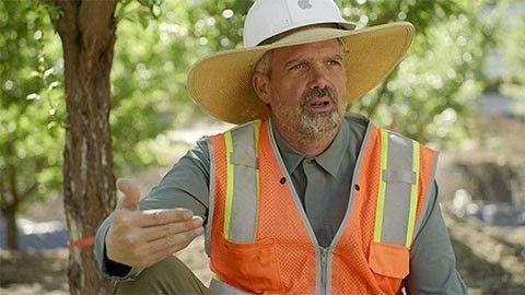 Apples chefsarborist David Muffly