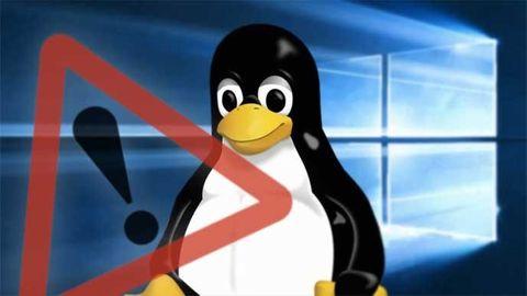 windows linux