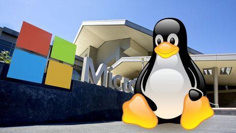 Montage: Tux och Microsoft-kontor