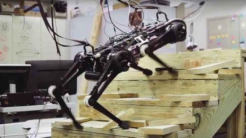 Roboten Cheeta.
