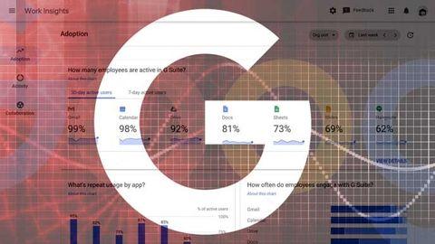 google work insights