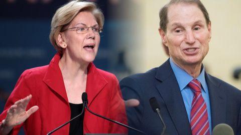Elizabeth Warren och Ron Wyden