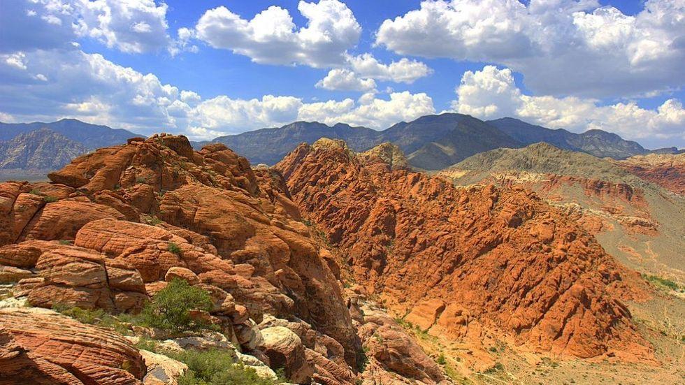 Mojave-öknen