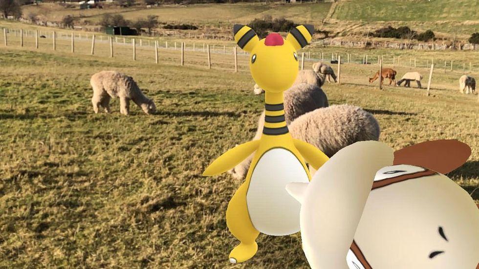 Smeargle och ar-kameran i Pokémon Go