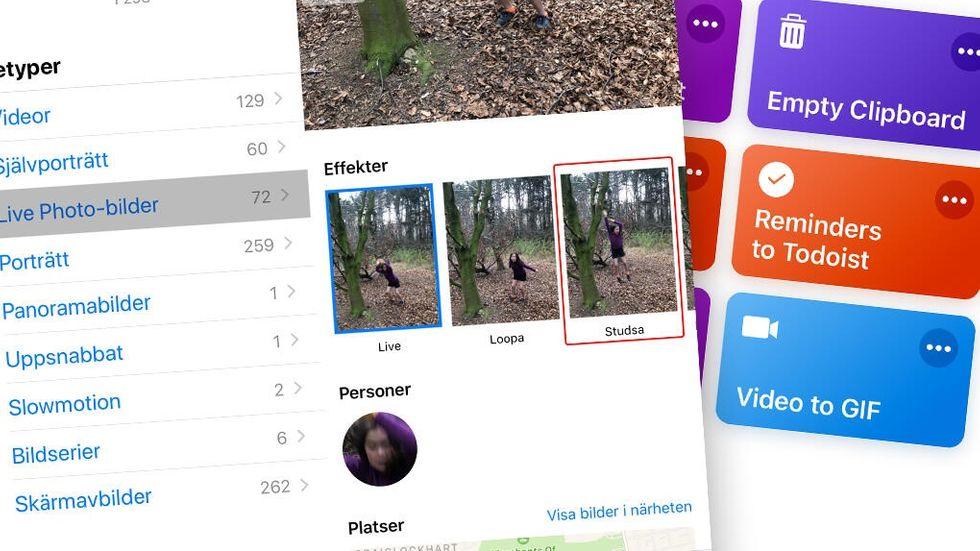 Skapa gif av video eller Live Photo