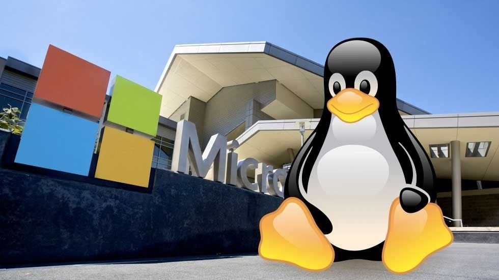 Windows + Linux