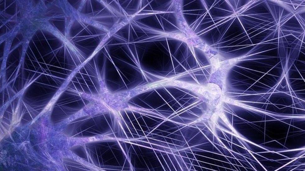 Neurala nätverk