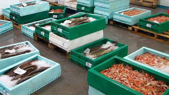 Smögens fiskauktion